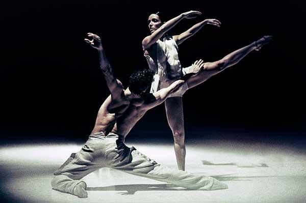 Нидерландский театр танца: все балеты онлайн
