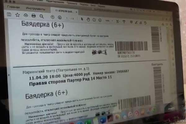 Силовики пресекли деятельность преступной группы, распространявшей поддельные билеты в театр через сайты-двойники