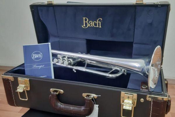 Государственный симфонический оркестр Татарстана закупил новые инструменты